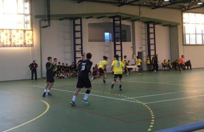handbal alexandria