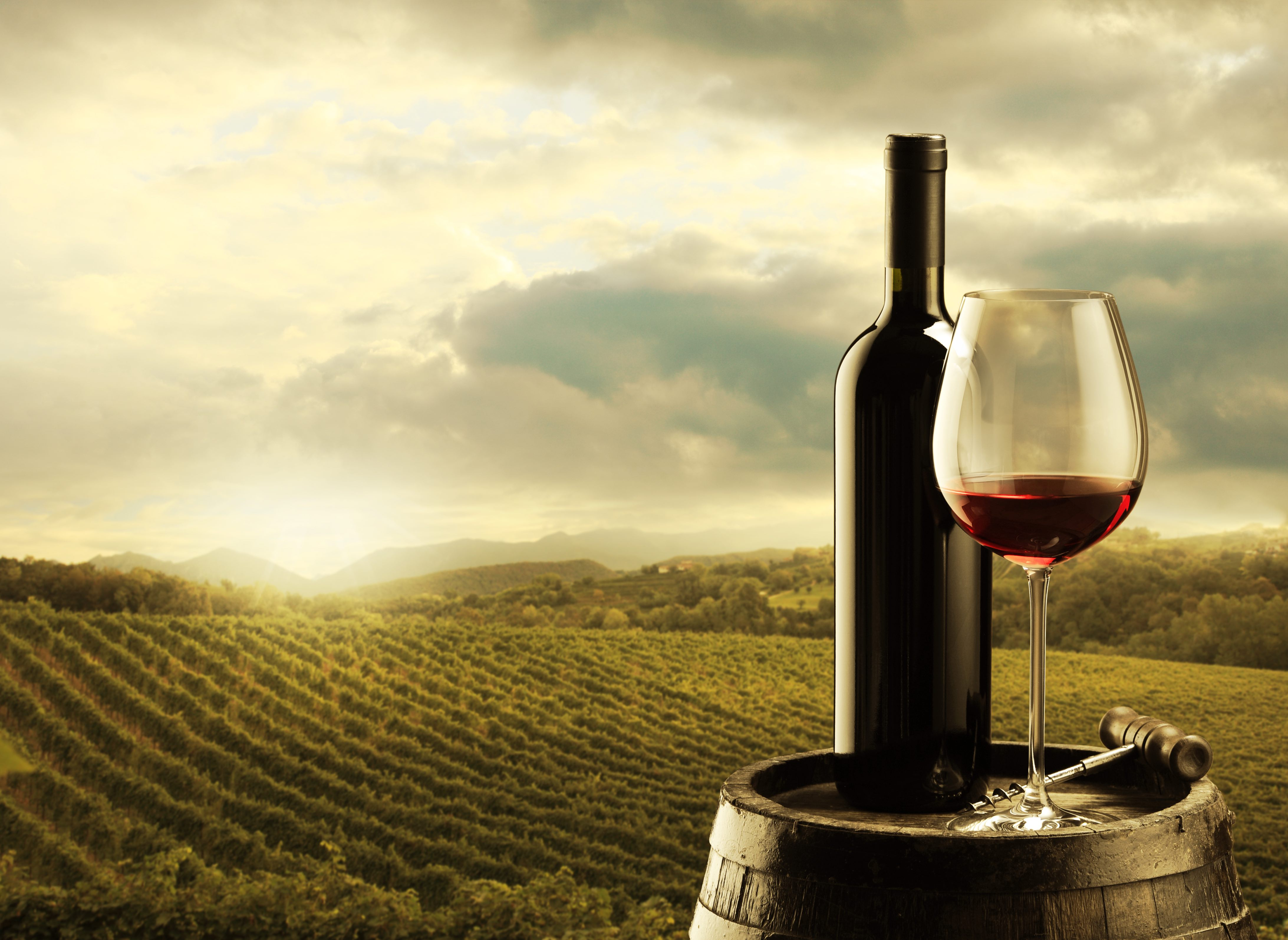 Concurs de vinuri