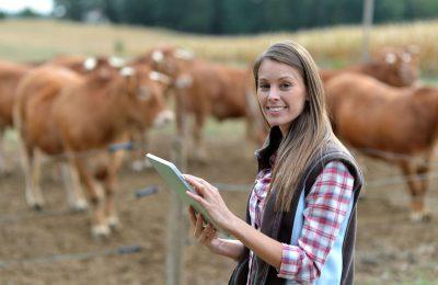 femeie fermieri