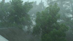 vânt ploaie avertizare cod galben