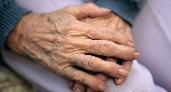 Legea pensiilor violeta radut maini de batran